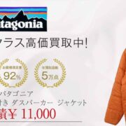 パタゴニア 03年製 紙タグ付き ダスパーカー ジャケット 画像