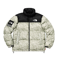 シュプリーム 新作モデル 19AW ×THE NORTH FACE Paper Print Nuptse Jacket 画像