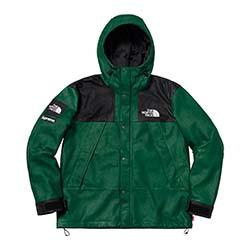 シュプリーム ×ノースフェイス 18AW Leather Mountain Jacket 画像