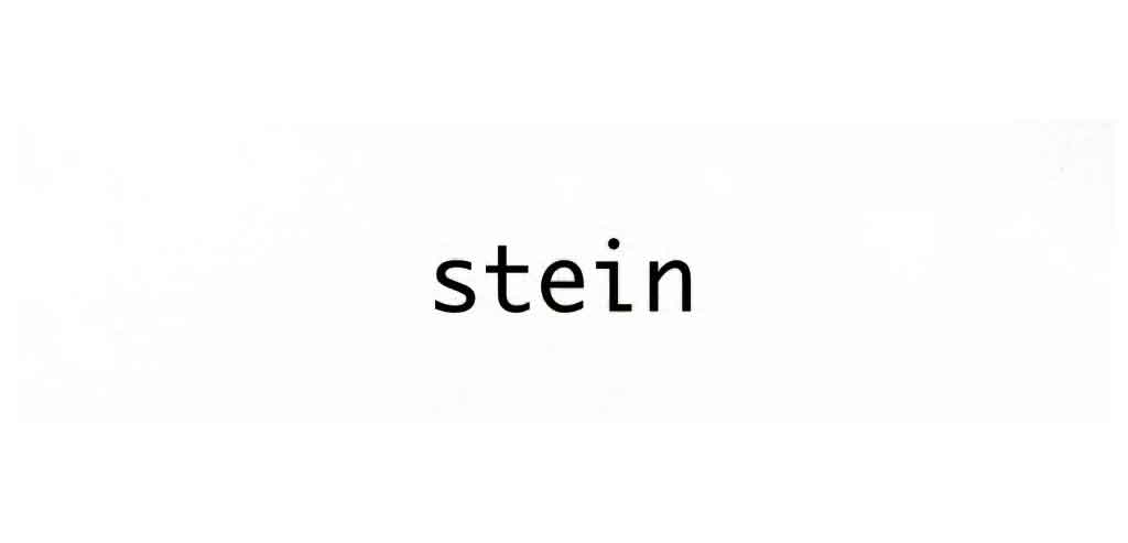シュタイン 画像