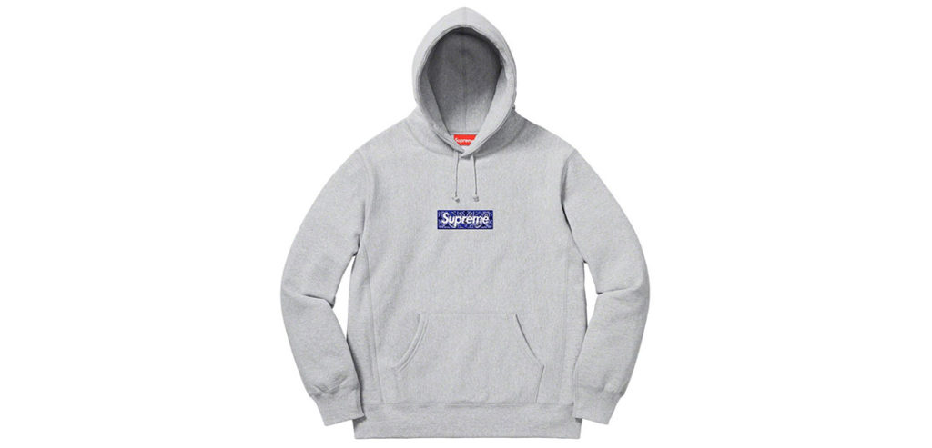 Box Logo Hooded Sweatshirt